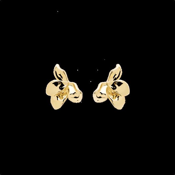 Damen Narcise Ohrringe AR01-191-U