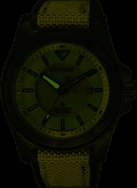 Citizen Herrenuhr Eco Drive Promaster BN0211-09X